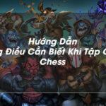 Hướng dẫn chơi Auto chess mobile